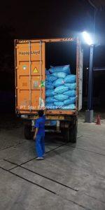 import buah zuriat