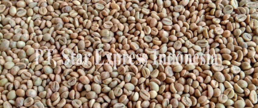 Luwak Coffee in Indonesia